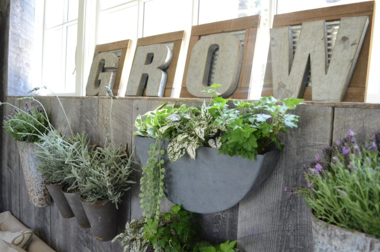 How to Create a Planter Wall in Your Home