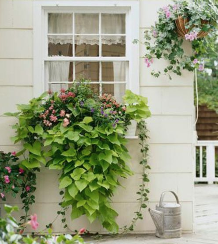 Introduction To Unusual Container Gardens: 15 Unique And Beautiful Container Garden Ideas