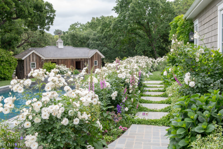 Tour Our Country Garden In Full Bloom