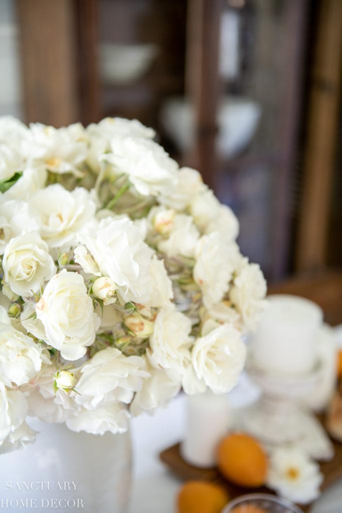 White Garden Roses-Iceberg Roses