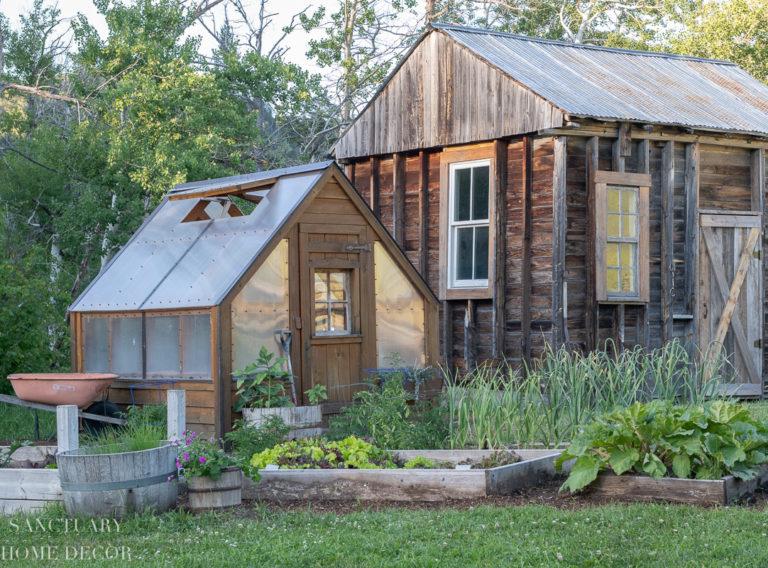 Tour Our Montana Vegetable Garden