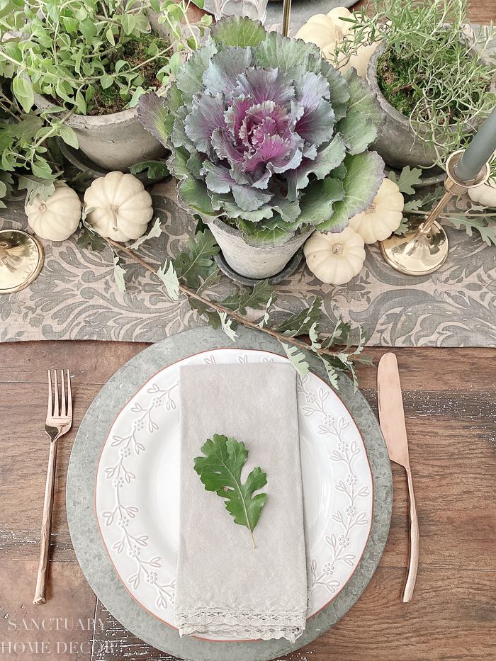 How to Make a Living Herb Thanksgiving Centerpiece